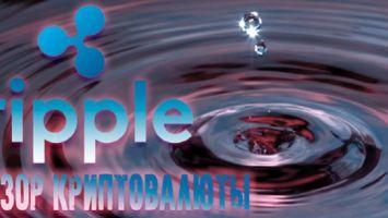 Ripple – обзор особенностей криптовалюты